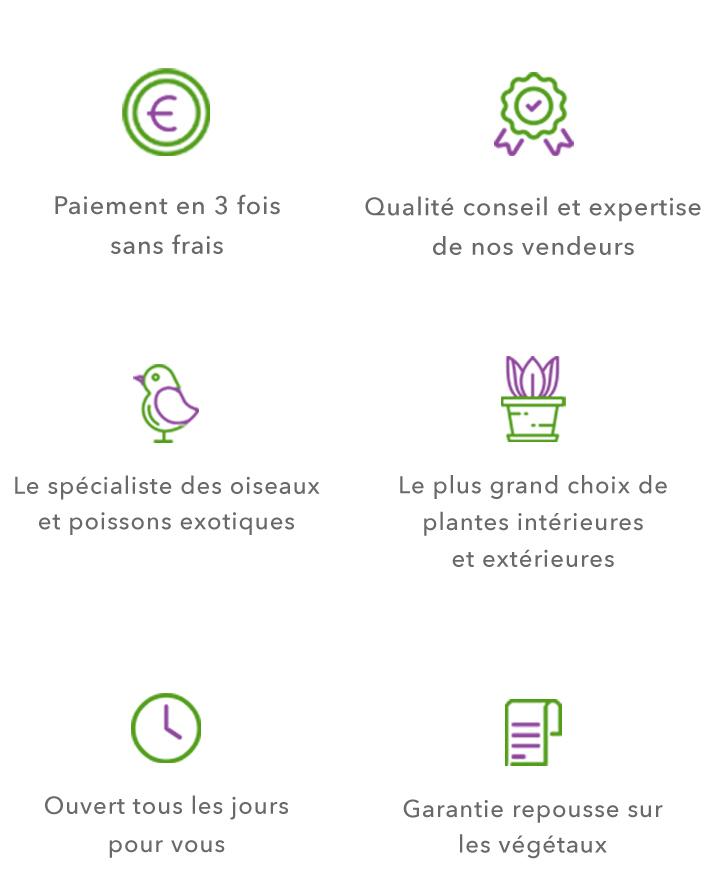 Jardinerie aix en provence meyreuil
